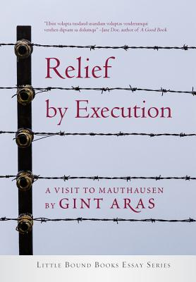 relief-by-execution-aras